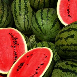 190KT of Watermelon Exported in 2 Months