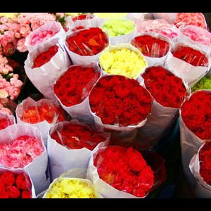 Flower Market in Slump