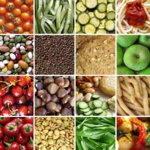 Agrofood Trade Balance Improves