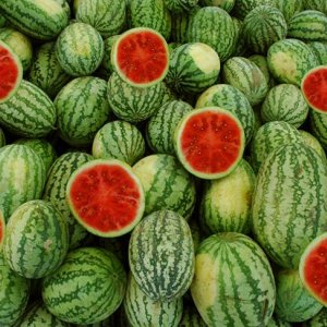 246KT of Watermelon Exported in 3 Months