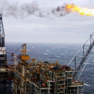 Oil Surrenders Gain