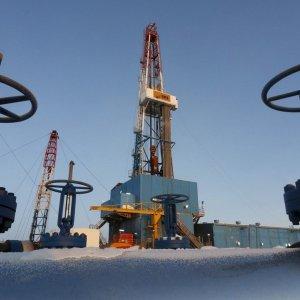 Saudi Arabia Fancies Market Balancing Role