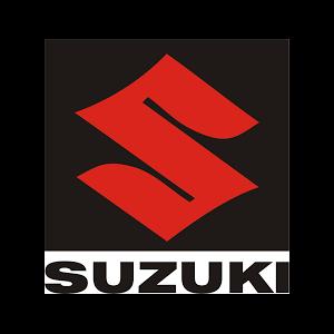 Suzuki Profits Plunge