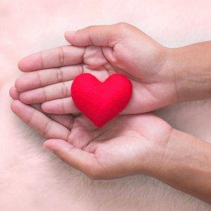 Increase in Heart Transplants