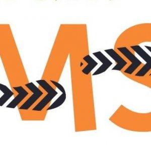 Specialized MS Clinics