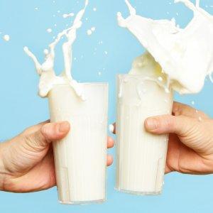 No Preservatives in Dairy