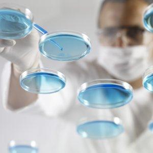 'Super Bacteria' Found in Rio Olympic Venues