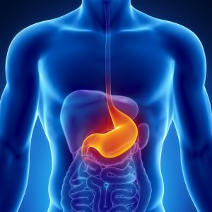 New Treatment for Stomach Ulcers