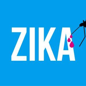 Olympics Team Prepared Against Zika