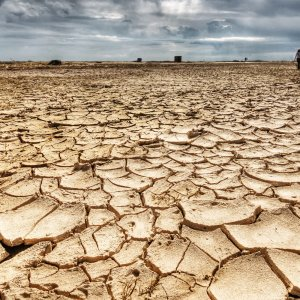 NY State Issues Drought Watch