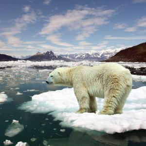 Climate Change Report Sets Challenging Task