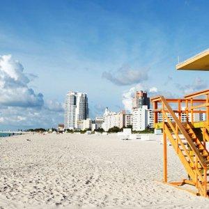 Zika Virus Confirmed at Miami Beach