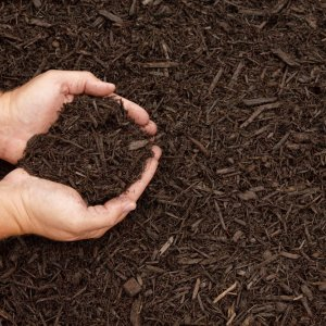 Oil Ministry Selling Mulch to DOE