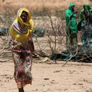 Hyenas Attack Starving Women in Somalia