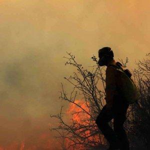 Wildfires Wreaking Havoc, Despite Preventive Measures