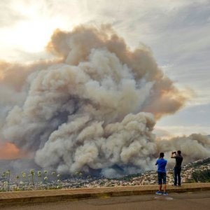 Wildfire Forces Madeira Island Residents to Flee