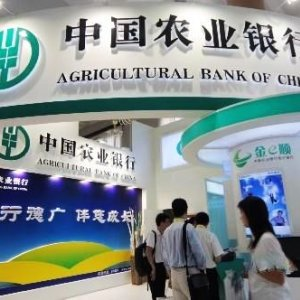 China Bank  to Sell  NPL-Backed Securities