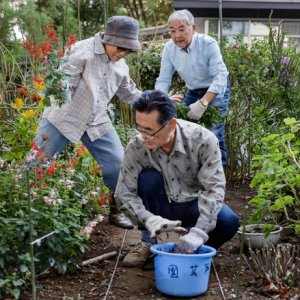 One in every fourJapanese are over the age of 65.