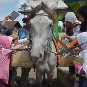 Horseback Library in Remote Indonesia