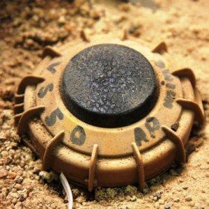 Boy Killed in Mine Explosion