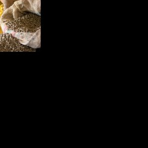 Animal Feed Production