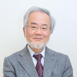 Japan Scientist Wins Nobel Medicine Prize