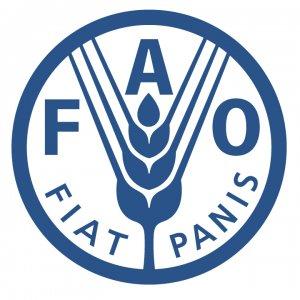 FAO to Help Afghan Refugees
