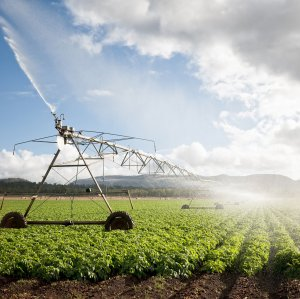 The government has approved the allocation of $500 million to install pressurized irrigation systems in farms.