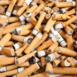Will the Tobacco Epidemic End?
