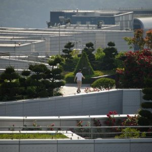 Seoul Elevates Gardening to High Art