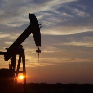 US Oil Price Fall Longest in 29 Years