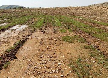 Semnan Water Problems Persist