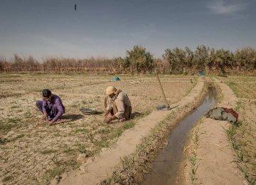 26m Face Water Shortage
