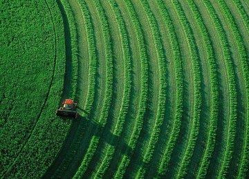Iran Agrifood Exports Hit $5.8b