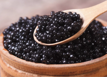 Iran: Farmed Sturgeon Meat, Caviar Output Projected to Increase