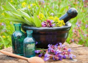 Iran's Medicinal Plant Exports Reach $570m Last Year