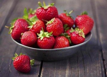 Kurdestan: Iran's Strawberry Production Hub