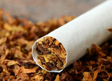 Rise in Cigarette Output, Exports