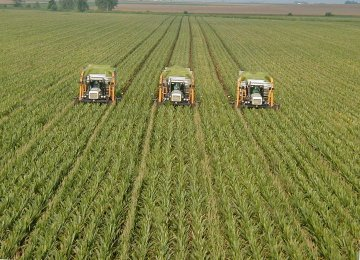 Q1-3 Agrofood Exports Rise by 48 Percent YOY to $6 Billion