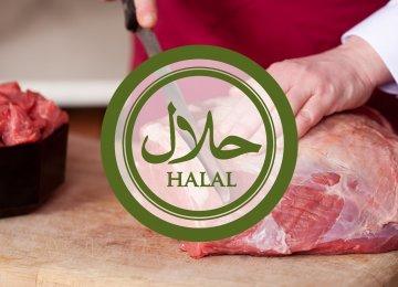 Iran's Share of Global Halal Market at Less Than 1%