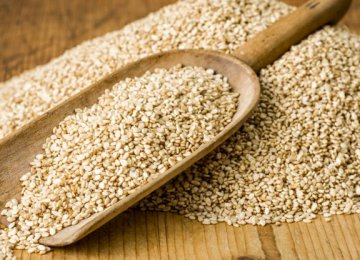 Sesame Imports at $30m in  4 Months
