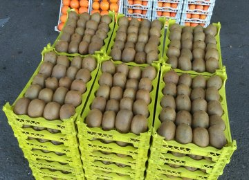 Mazandaran Kiwi, Orange Exports Fetch $200m