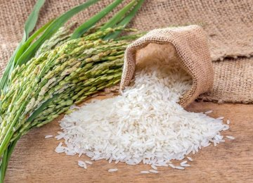 Iran: Over $1b Worth of Rice Imported in 10 Months