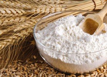 Iran's Share of Iraq's Flour Market Reaches 16 Percent Per Annum