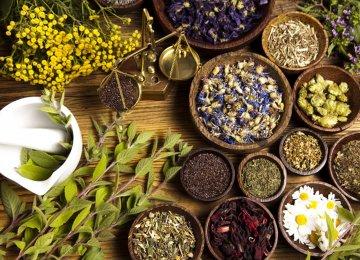 40% Decline in Medicinal Plant Exports