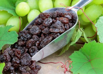 Raisin Exports at $164m in Fiscal 2019-20
