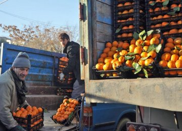 Fruit Prices Zoom