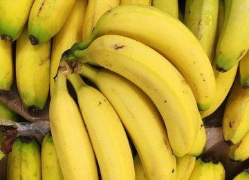 Q1 Banana Import at Over $130m