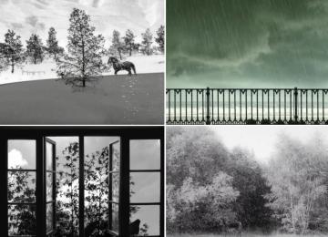"Screenshots from Abbas Kiarostami's ""24 Frames"""