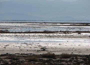 DOE Steps Up Drive to  Revive Bakhtegan Lake